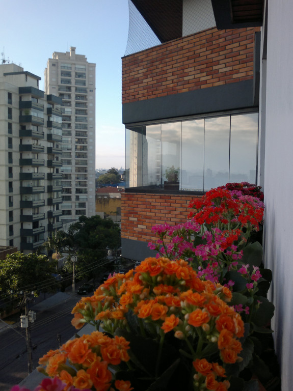 foto - São Paulo - Vila Mascote