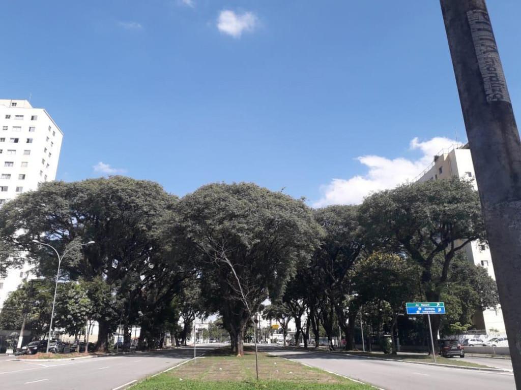 Apartamento a venda na Avenida Dom Pedro I, Vila Monumento, São Paulo, SP