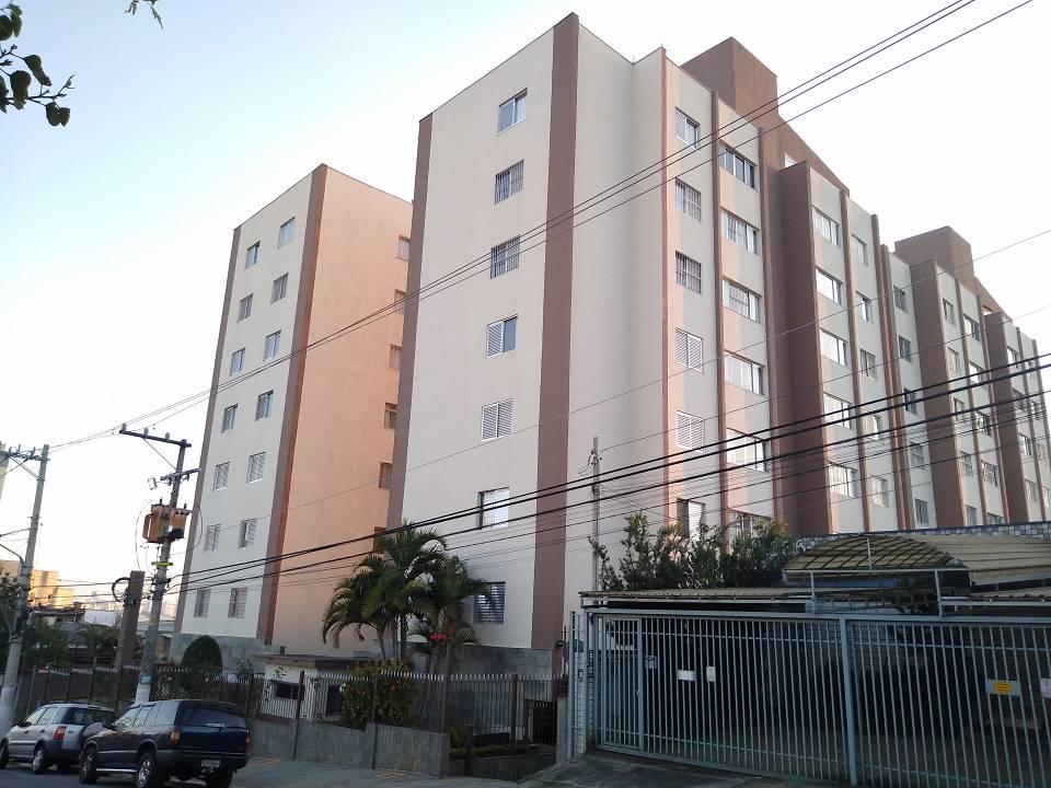 foto - São Paulo - Limão