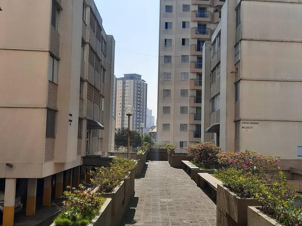 foto - São Paulo - Jardim Taquaral