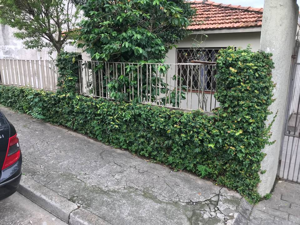 foto - São Paulo - Vila Morse