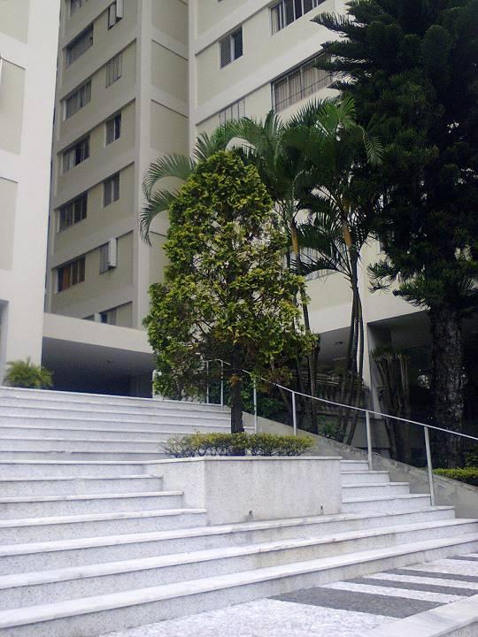 foto - São Paulo - Móoca