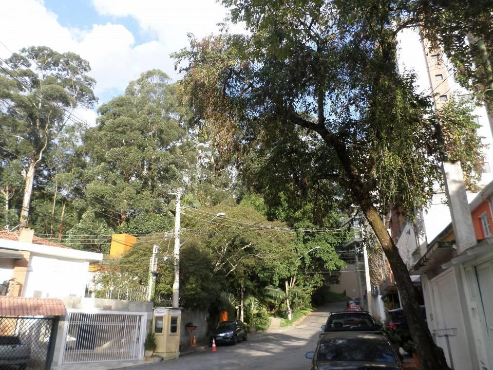 foto - São Paulo - Morumbi